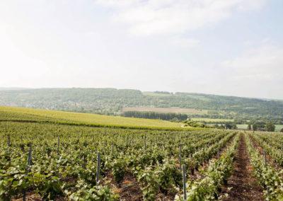 Champagne-Guibert-031-min-min